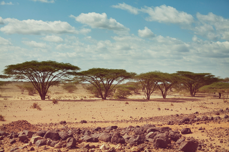 Safari and extreme travel in Africa. Drought  mountain landscape with dust off road in offroad car expedition. Stock Photo