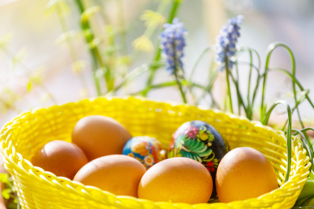 Close up Easter eggs in a basket. Spring easter background.