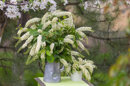 Spring scene  in the green garden Standard-Bild - 122918503