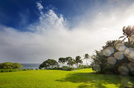 Beautiful tropical landscapes on Maui island, Hawaii 免版税图像