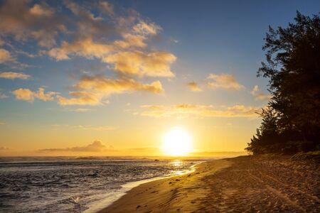 Serenidad en la playa tropical