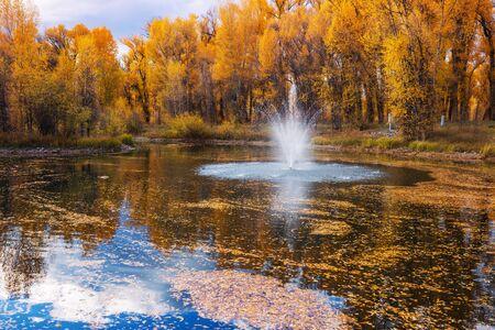 Fountain in beautiful autumn park