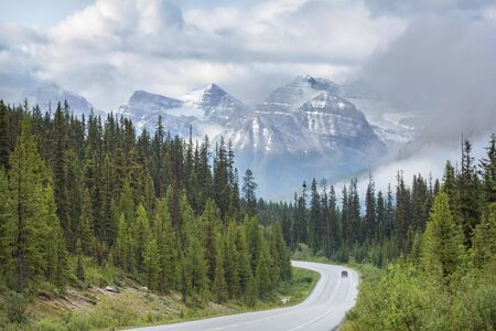 Highway in Canadian forest at summer season