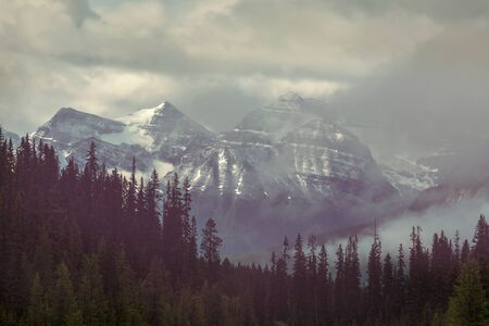 Picturesque mountain view in the Canadian Rockies in summer season 写真素材