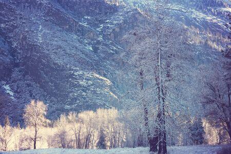 Winter season in Yosemite National Park, California, USA