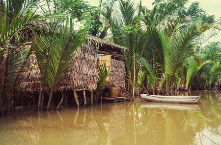 Wooden hut and boat in Mekong Delta, Vietnam 免版税图像