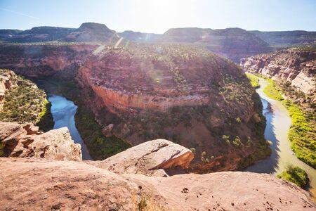 Green river in Colorado, USA