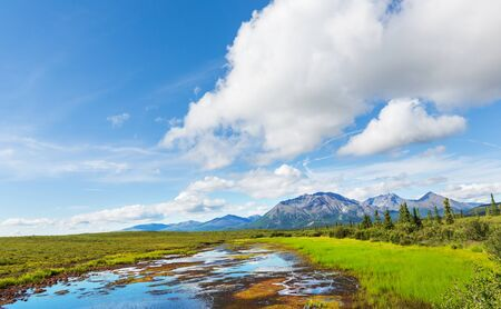 Picturesque Mountains of Alaska in summer. Snow covered massifs, glaciers and rocky peaks. 免版税图像 - 138173738