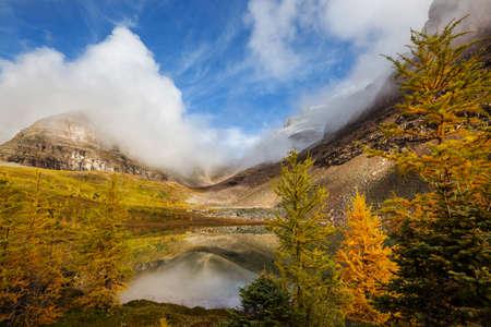 Beautiful autumn season in Canadian mountains. Fall background. 免版税图像