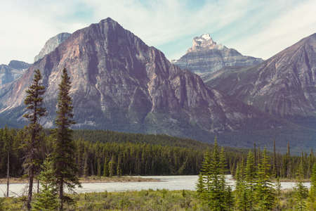 Picturesque mountain view in the Canadian Rockies in summer season Stok Fotoğraf