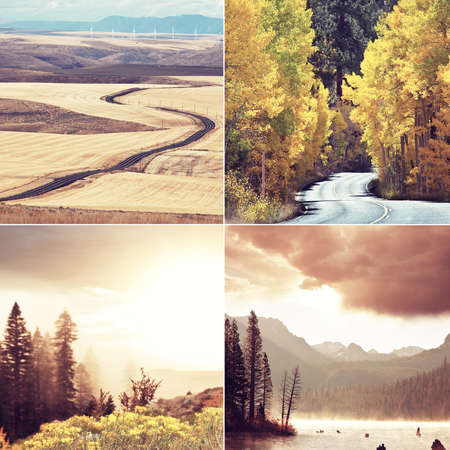 Orange and Yellow Autumn collage. Fall background.