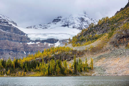 Beautiful autumn season in Canadian mountains. Fall background. Banque d'images
