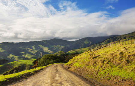 Scenic Road among green hills in  New Zealand.