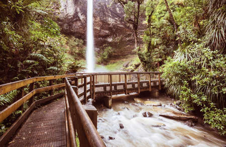 beautiful waterfall in green rainforest, New Zealand Banque d'images