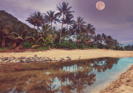 Night scene in tropical beach, Hawaii, Kauai