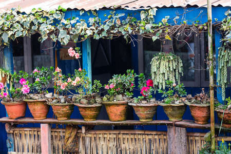 Fasade rural house decorated with flowers