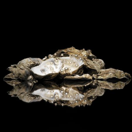 oyster with pearls Stock Photo