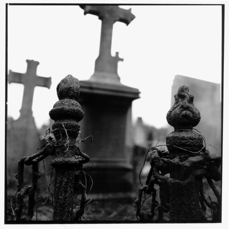 blak white: cemetery in black and white