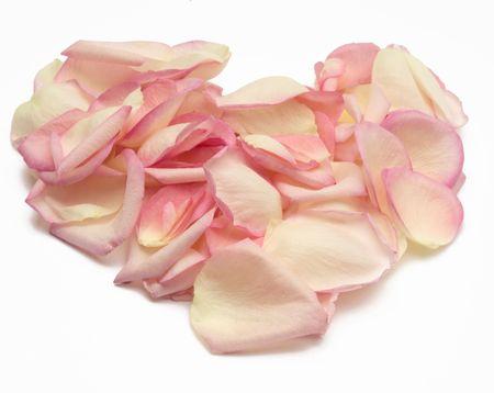 roseleaf: rose heart against white background Stock Photo