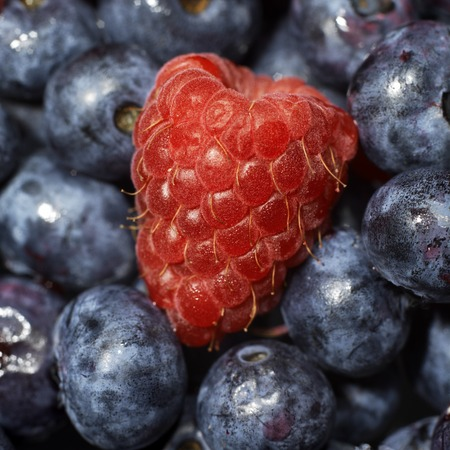 macro of a raspberry surrounded by blueberries