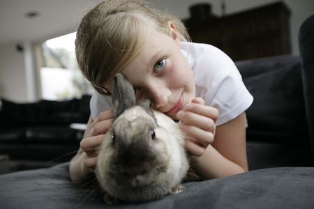 portrait of a girl with her rabbit pet Stock Photo