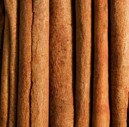 Cinnamon stick (Texture)
