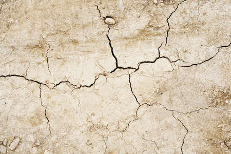 Cracked dried earth texture Stock Photo