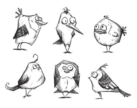 sparrow: Funny cartoon birds Illustration