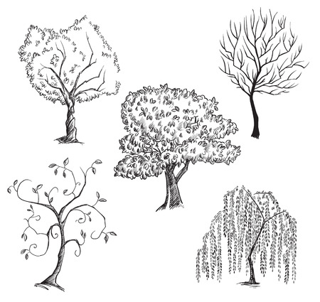 木のコレクション  イラスト・ベクター素材