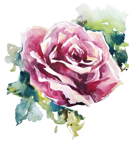 watercolor rose  Flower painting    Vector