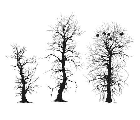 freehand drawing: trees silhouettes. Vector. Isolated on white.