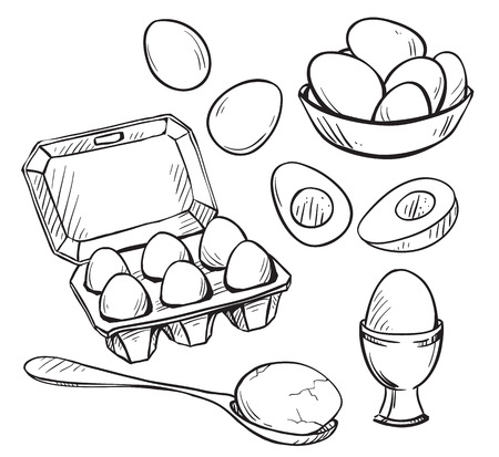 boiled eggs: Set of eggs drawings. Hand drawn. Vector illustration.