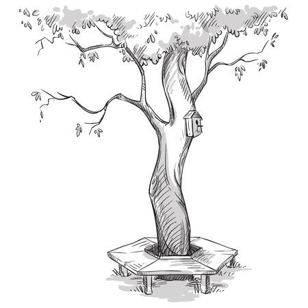 정원. 나무와 주변 나무 벤치. 일러스트