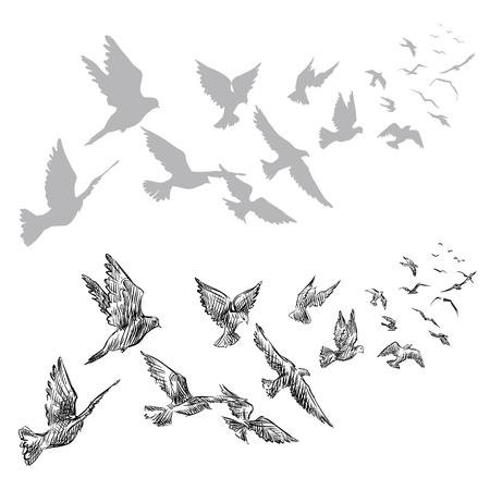 bandada pajaros: palomas volando, dibujado a mano, ilustración vectorial