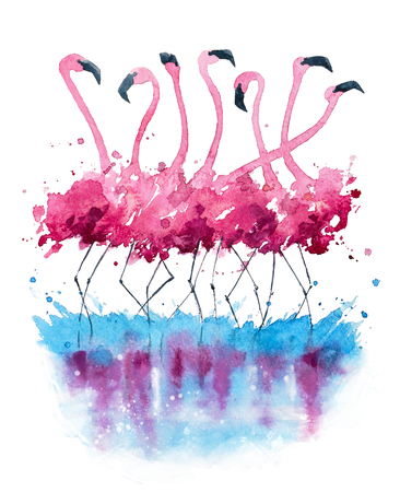 water birds: Flamingos watercolor painting