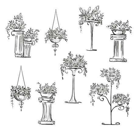 flower pot: Flower decorations.