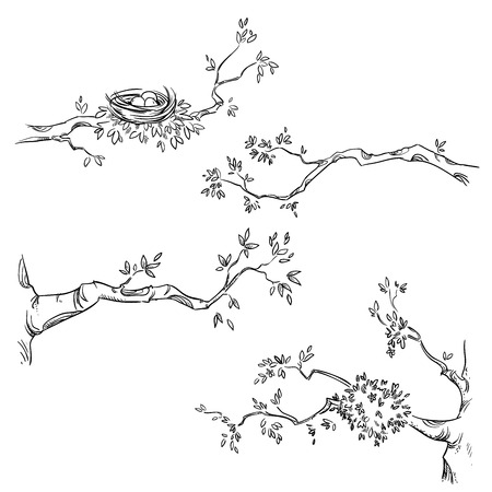 Set of hand drawn branches illustration