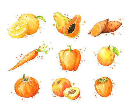 Assortment of orange foods, watercolor fruit and vegtables Imagens
