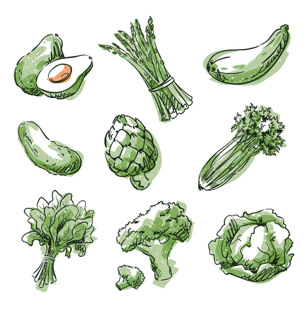 Assortment of green foods, fruit and vegtables, vector sketch