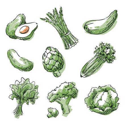 Assortment of green foods, fruit and vegtables, vector sketch