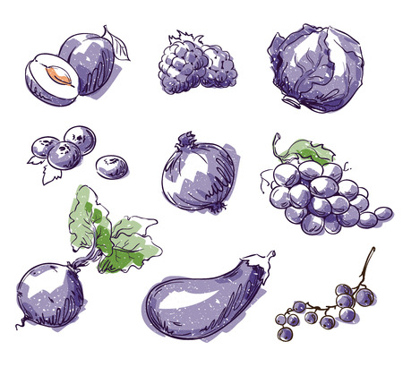 Assortment of purple foods, fruit and vegtables, vector sketch Çizim