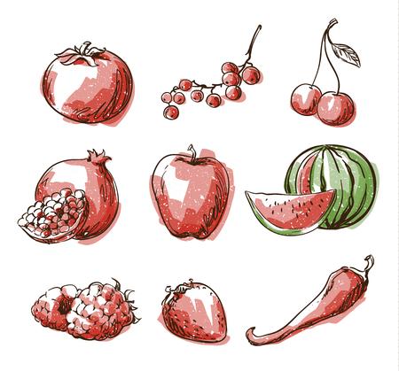 Assortiment van rood voedsel, fruit en groenten, vector schets