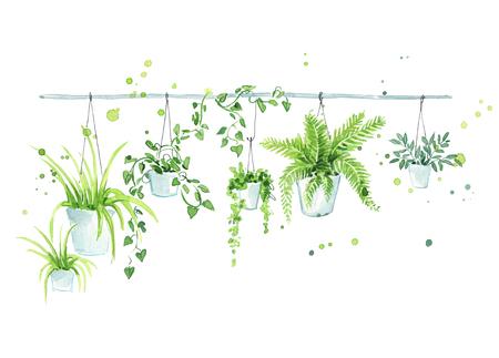 Hanging flower pots, interior design element