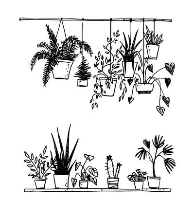 Conjunto de plantas de interior en macetas Ilustración de vector