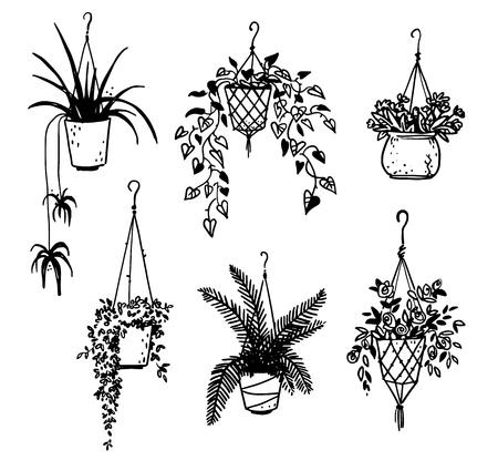 Set of potted house plants Illustration