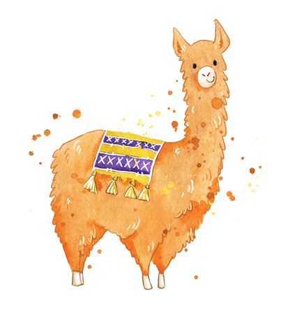 Isolated watercolor hand painted llama, isolated on white