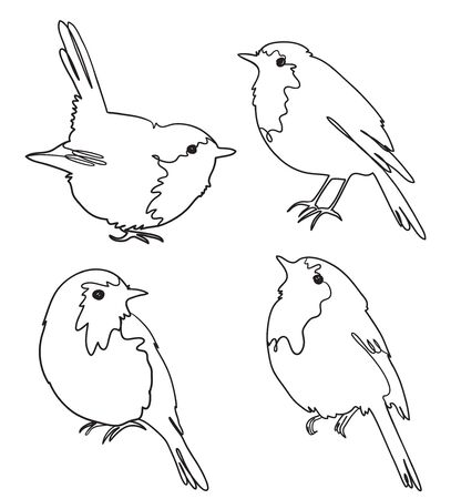 Set of four robin birds, freehand outline vector