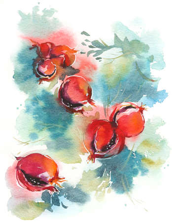 ripe pomegranate tree watercolor background hand painted Stok Fotoğraf