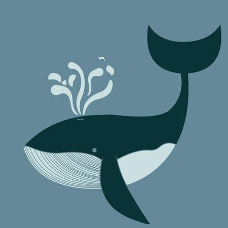 ballena azul: Una ballena azul nadando en el mar  Vectores