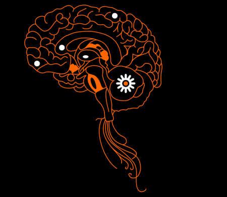 Orange brain  on black background Vector